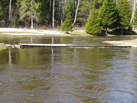 Leisi jõgi suurvee ajal